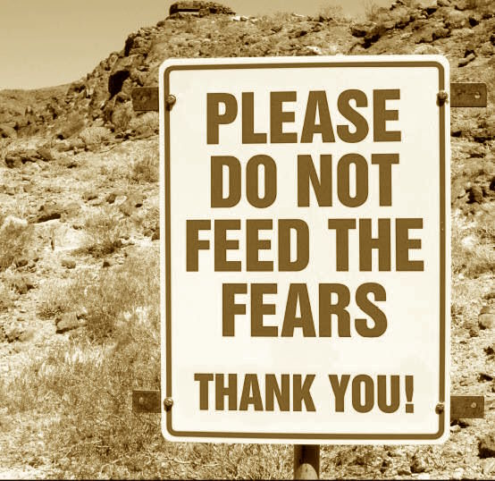 Don't feed your fears…fuck them!